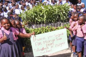 Haití arboles de mango